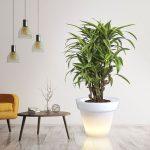nowoczesne-donice-led-swiatlo-cieple-podswietlone-donice-donica-lampa-do-ogrodu