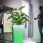 zielona-donica-led-dla-wymagajacych-klientow